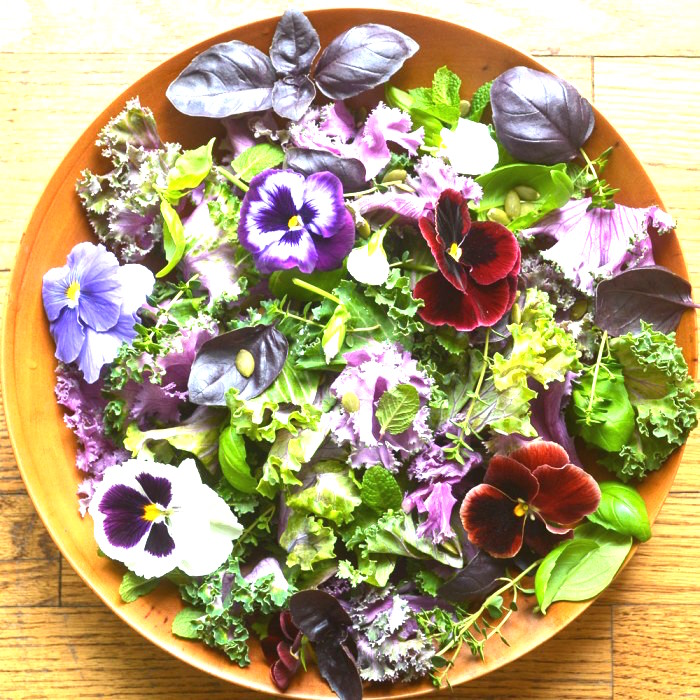 organic garden salad shiva rose The Numinous