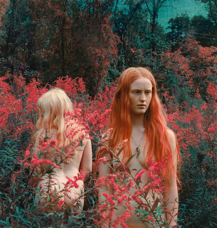 Women with red flowers by Shae DeTar featured on The Numinous