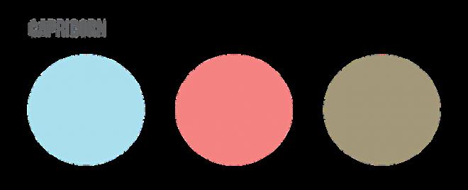Capricorn Colors