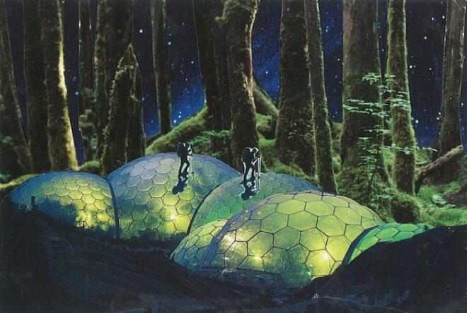 Waning Sagittarius Quarter Moon Explorers geodesic dome forrest Seana Gavin The Numinous