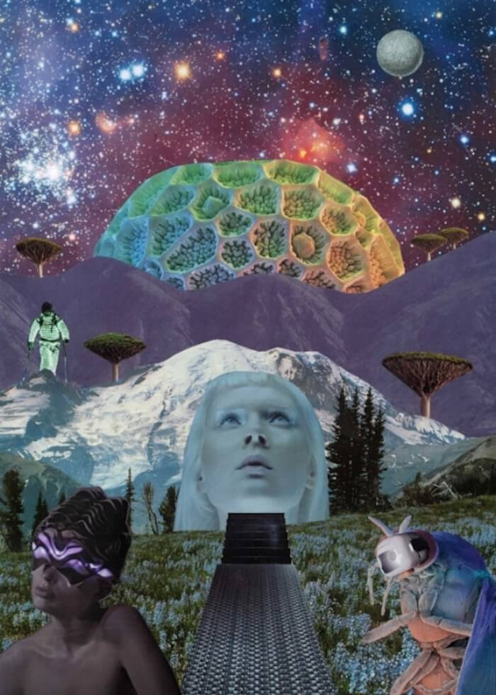 Seana Gavin collage The Numinous pisces waning quarter moon
