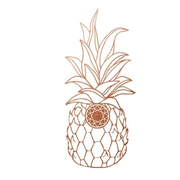 alex + ani universe has a message the numinous ruby warrington carolyn rafaelian material girl mystical world pineapple