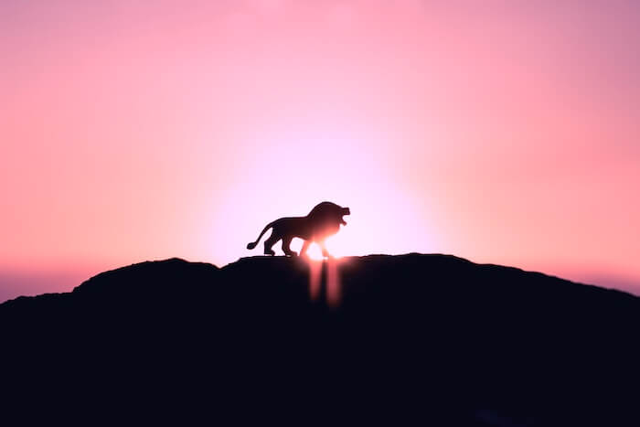1134b59c6fd21a THE 2018 LEO FULL MOON LUNAR ECLIPSE WANTS YOU TO WIELD YOUR POWER