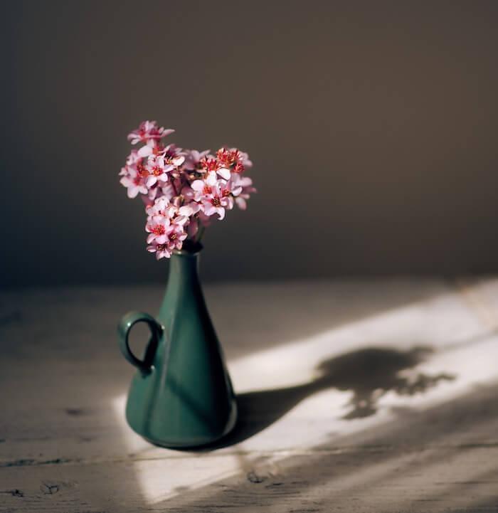 Taurus Season 2018 The Numinous Bess Matassa still life flowers vase shadow